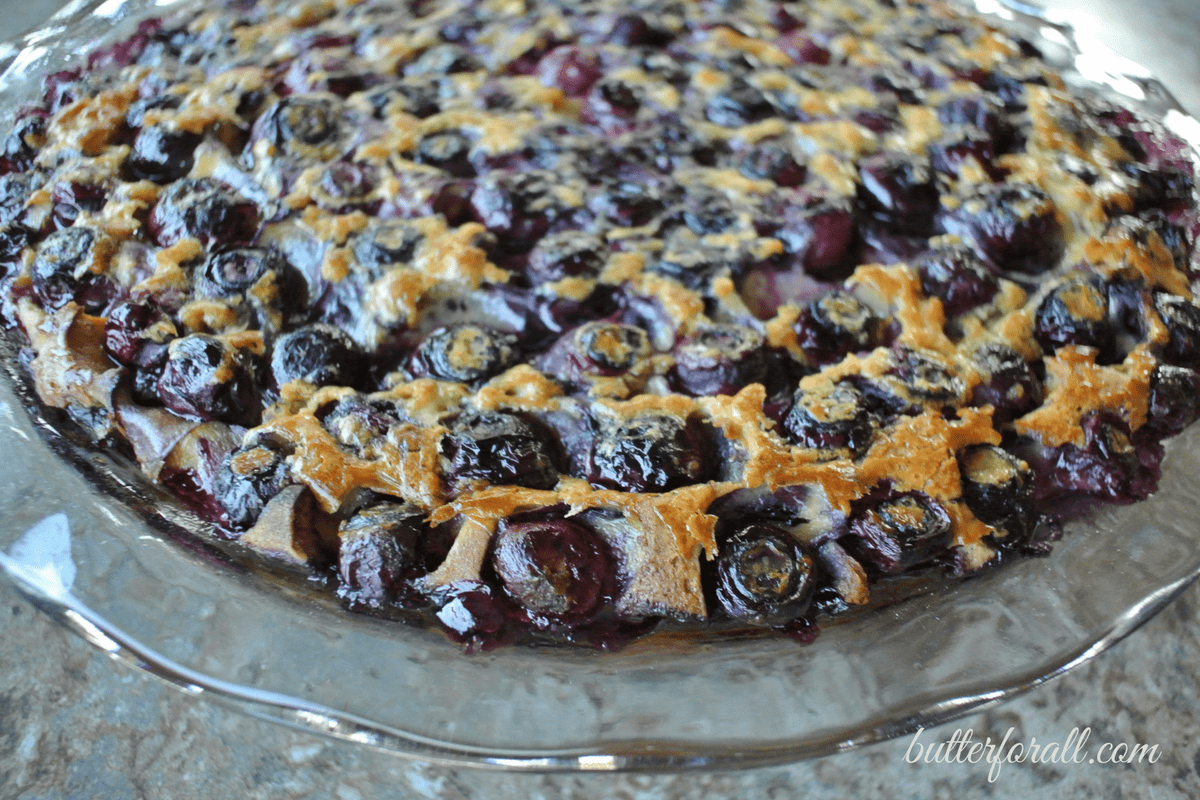 Freshly baked blueberry clafoutis in a pie pan.