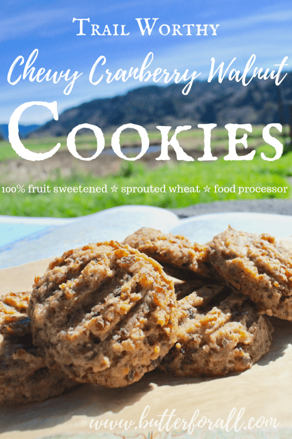 The perfect cookie for your next adventure! This chewy cranberry walnut cookie is made with properly prepared sprouted flour and sweetened with dried fruit. Not to mention the whole recipe comes together quickly in your food processor! Is it time to hit the trail? #hiking #adventure #realfood #cookies #nourishingtraditions #fruitsweetened