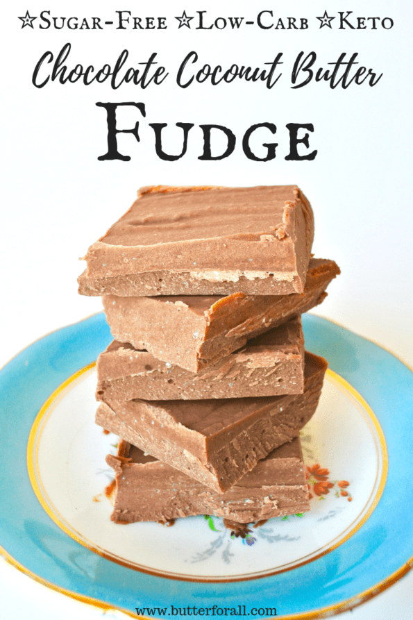Rich coconut chocolate fudge made without sugar.