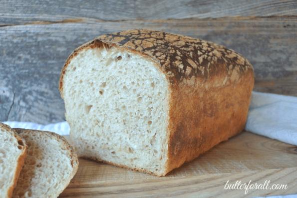 Butter Top Sourdough Sandwich Bread