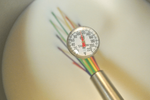 A thermometer for raw cow's milk yogurt.