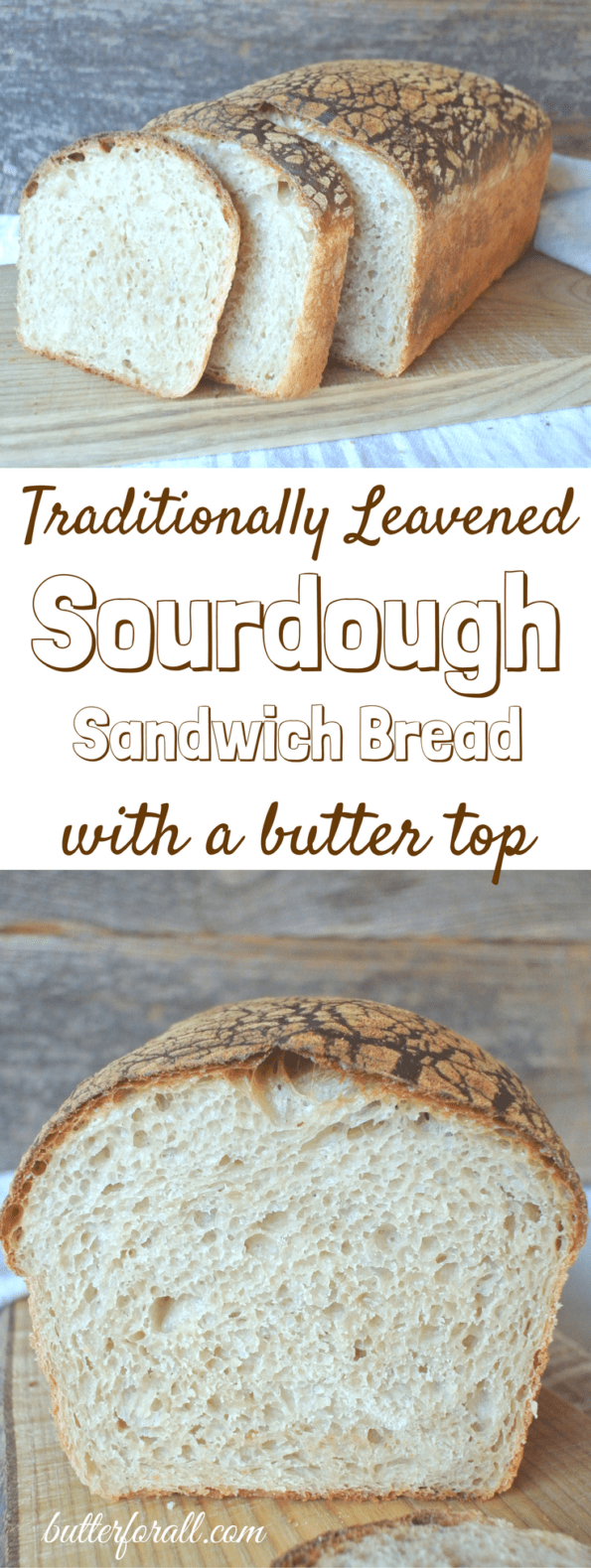 Butter Top Sourdough Sandwich Bread is going to become your new favorite slicing bread. It is great for sandwiches , French toast and more! #realfood #sourdough #nourishingtraditions #wisetraditions #fermented #properlyprepared