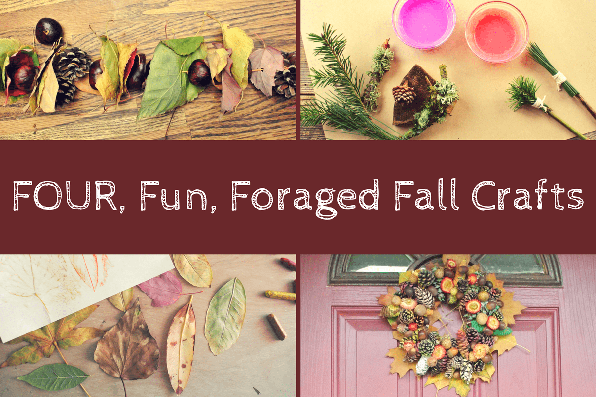 Four, Fun, Foraged Fall Crafts For Families
