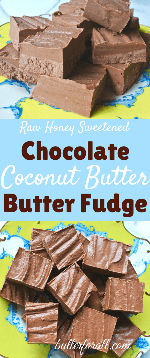 Chocolate Coconut Butter Butter Fudge- Sweetened With Raw Honey