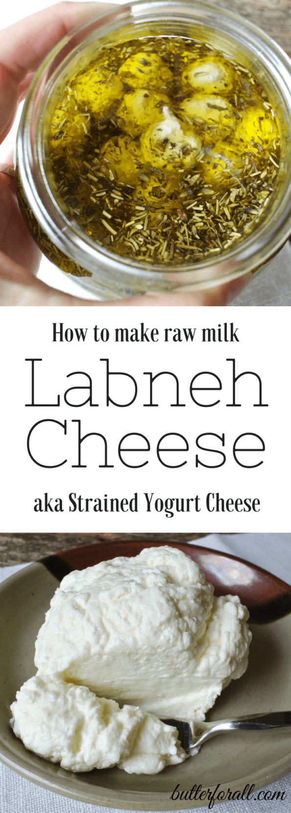 Raw Milk Labneh Cheese - Strained Yogurt