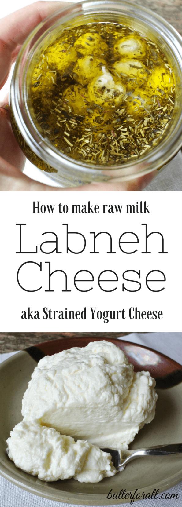 Raw Milk Labneh Cheese - Strained Yogurt