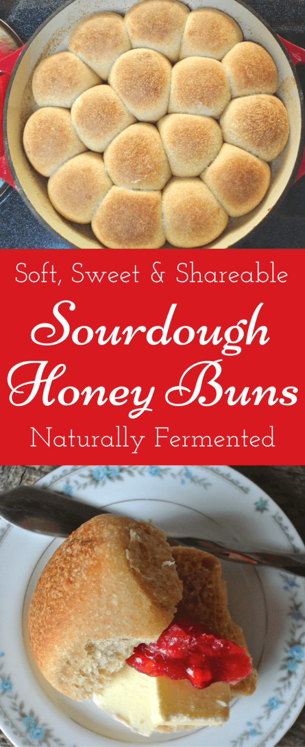 Soft, Sweet and Sharable Sourdough Honey Buns