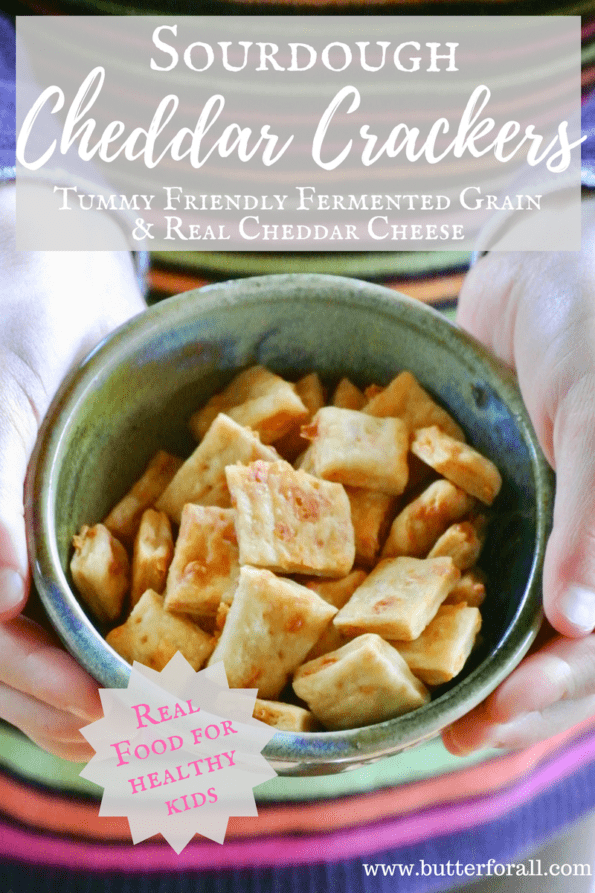 Sourdough Cheddar Crackers, Real Food For Healthy Kids