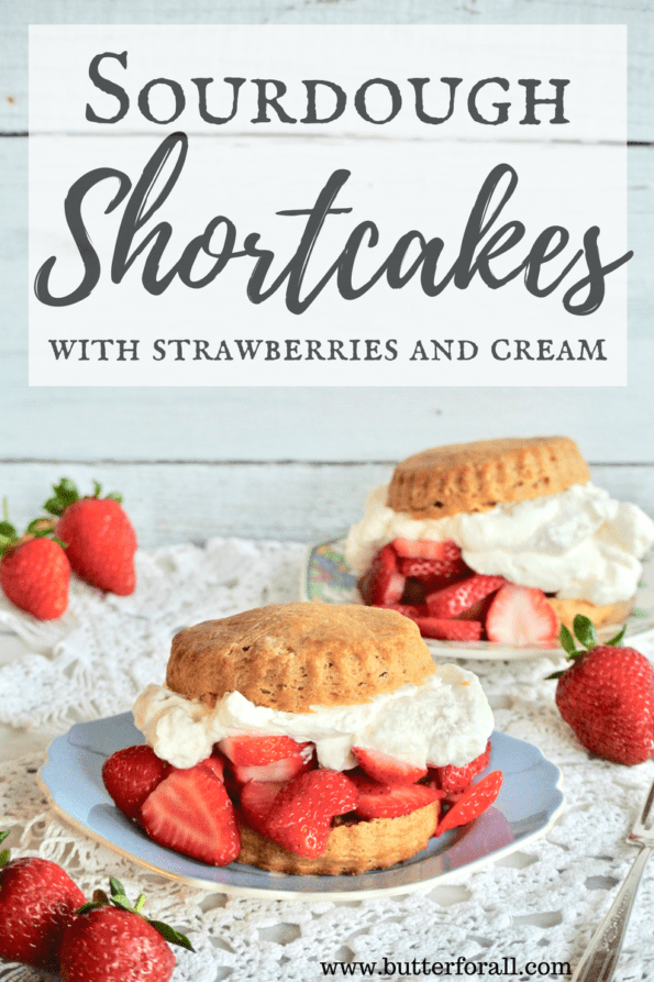 Stack these traditionally leavened sourdough shortcakes high with fresh strawberries and cream. They are perfectly sweet with a soft cake-like texture.