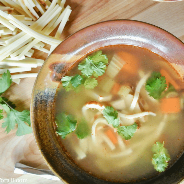 The Perfect Chicken Noodle Soup. Low-Carb, Grain-Free and Kept Friendly