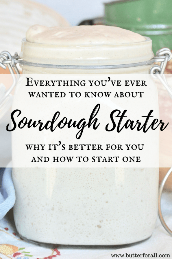 The ultimate sourdough guide with common terms and troubleshooting tips.