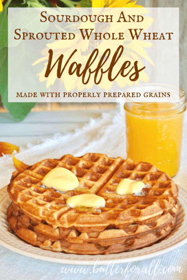 An easy nourishing sourdough waffles recipe made with properly prepared grains.