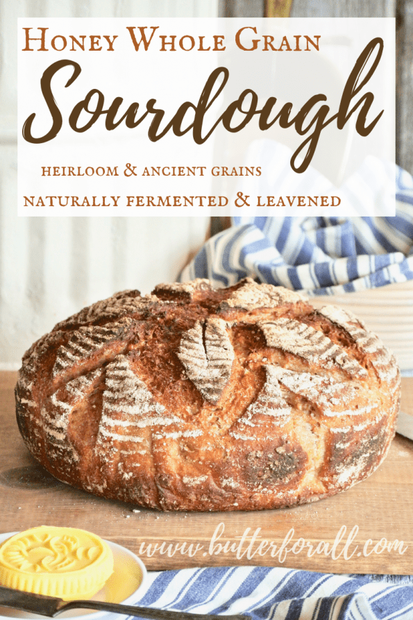 The perfect whole grain sourdough bread with a soft and chewy texture. This bread is slightly sweet with a touch of honey and extra wholesome with a long fermentation! #realfood #realbread #sourdough #wisetraditions #nourishingtraditions #masamadre #motherdough #starter