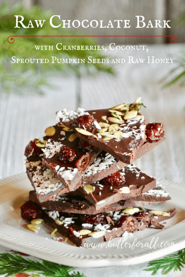 This honey sweetened raw chocolate bark is topped with sweet and tart dried cranberries, nutty coconut, and salty sprouted pumpkin seeds. This is the perfect holiday treat for the real foodies in your life!  #raw #glutenfree #dairyfree #cacao #Christmas #holiday #realfood