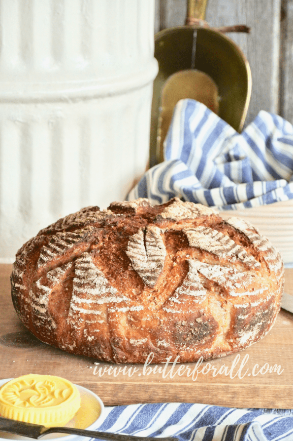 Learn how to make a perfect whole grain sourdough boule with just a touch of honey. This traditionally fermented and leavened bread is made with a variety of heirloom and ancient whole grains. #realfood #realbread #sourdough #wisetraditions #nourishingtraditions #masamadre #motherdough #starter