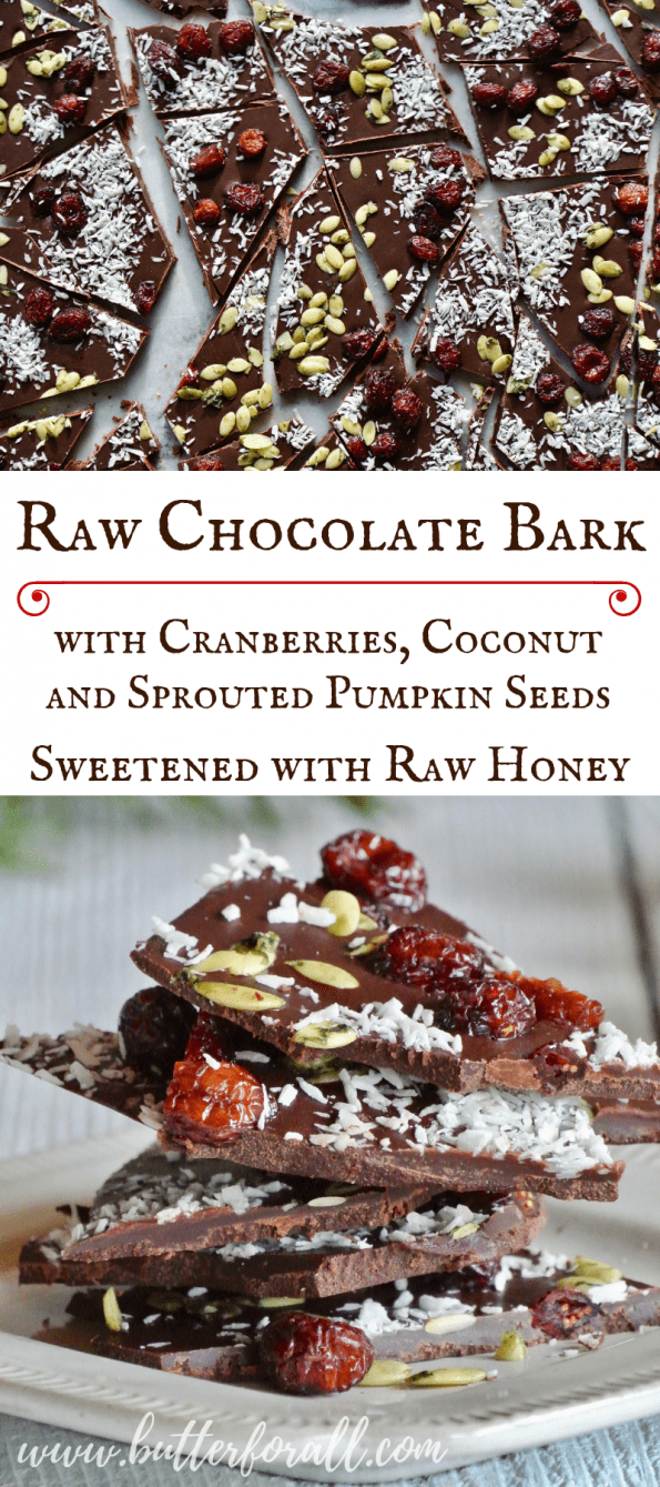 This incredible raw chocolate bark is made with raw cacao, raw coconut and raw honey and is topped with dried cranberries , coconut flakes and sprouted pumpkin seeds! Take this easy bark to your next holiday party or give it as a special gift. #raw #glutenfree #dairyfree #cacao #Christmas #holiday #realfood