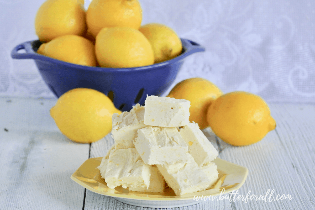 Lemon Coconut Butter Fudge – Raw, Real Food with a Keto Friendly Option