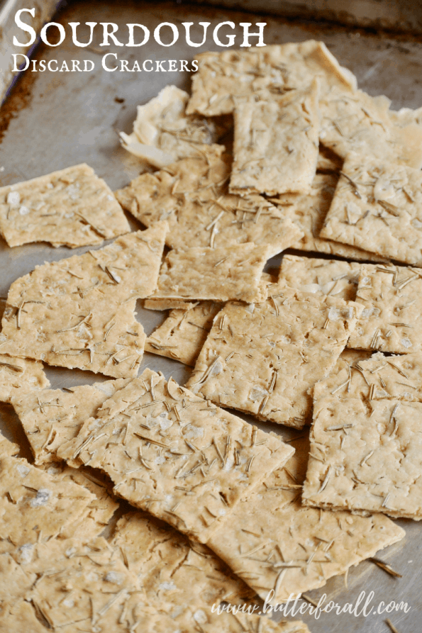 This is the easiest cracker recipe with the best results. Only four ingredients, 5 minutes of mixing and an hour of baking results in the crispiest most flavorful sourdough crackers ever! #starter #flatbread #discardonly #realfood #cheese #appetizer #snacks #sourdough #wisetraditions #nourishingtraditions
