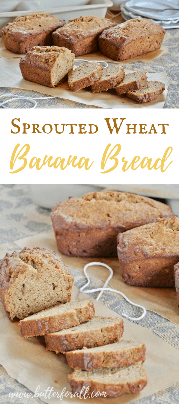 This soft and buttery Banana Bread is made with sprouted whole wheat flour, coconut sugar, and healthy fats for a nourishing and nutrient dense treat. #realfood #sprouted #refinedsugarfree #breakfast #brunch #nutfree #bananabread #easy #fast #wisetraditions #nourishingtraditions