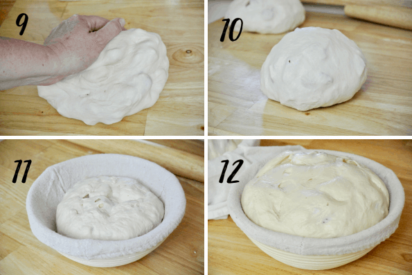 Cheesy Sourdough Pizza Bread Steps 9-12. Showing gentle kneading, a tight dough ball, dough in proofing basket, and doubled dough ready for baking.
