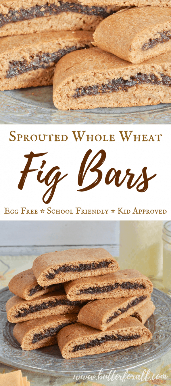 A classic fig bar reimagined with real food ingredients that will fit into a nourishing adventurous lifestyle. #WAPF #realfood #properlyprepared #Fruitsweetened #wapfkids #treat #fignewman #figgybar #sproutedwheat #wholewheat #backtoschool #schoollunch #trailsnack #picnic
