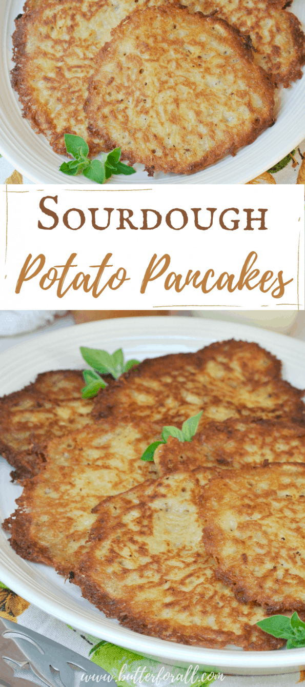 A collage of plates of sourdough potato pancakes with text overlay.