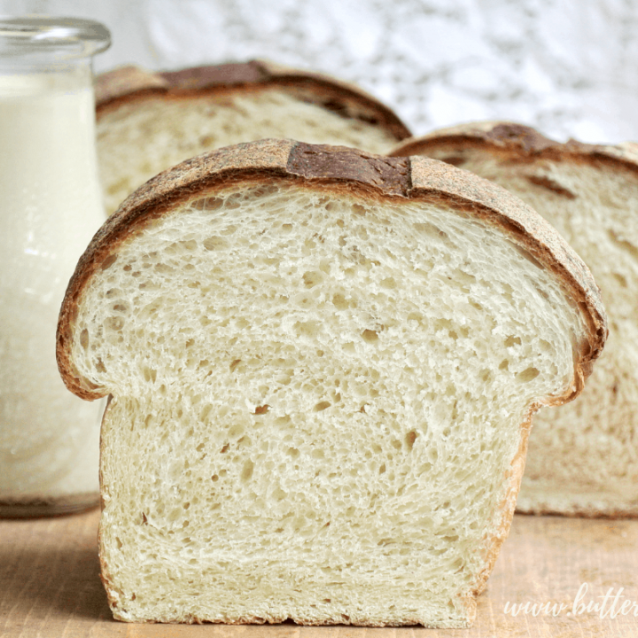 This recipe makes the softest and most delicious Sourdough Milk Bread. The dough is hydrated with fresh milk and has just a touch of sweetness from real honey. If you are looking for a 100% sourdough milk bread that is sweet and extra soft, this recipe is for you! #milk #honey #sourdough #milkbread #milkdough #dough #starter #fermentation #wildyeast #realbread #homemade #white #sandwich #rawmilk #rawhoney #soft #tender #bread