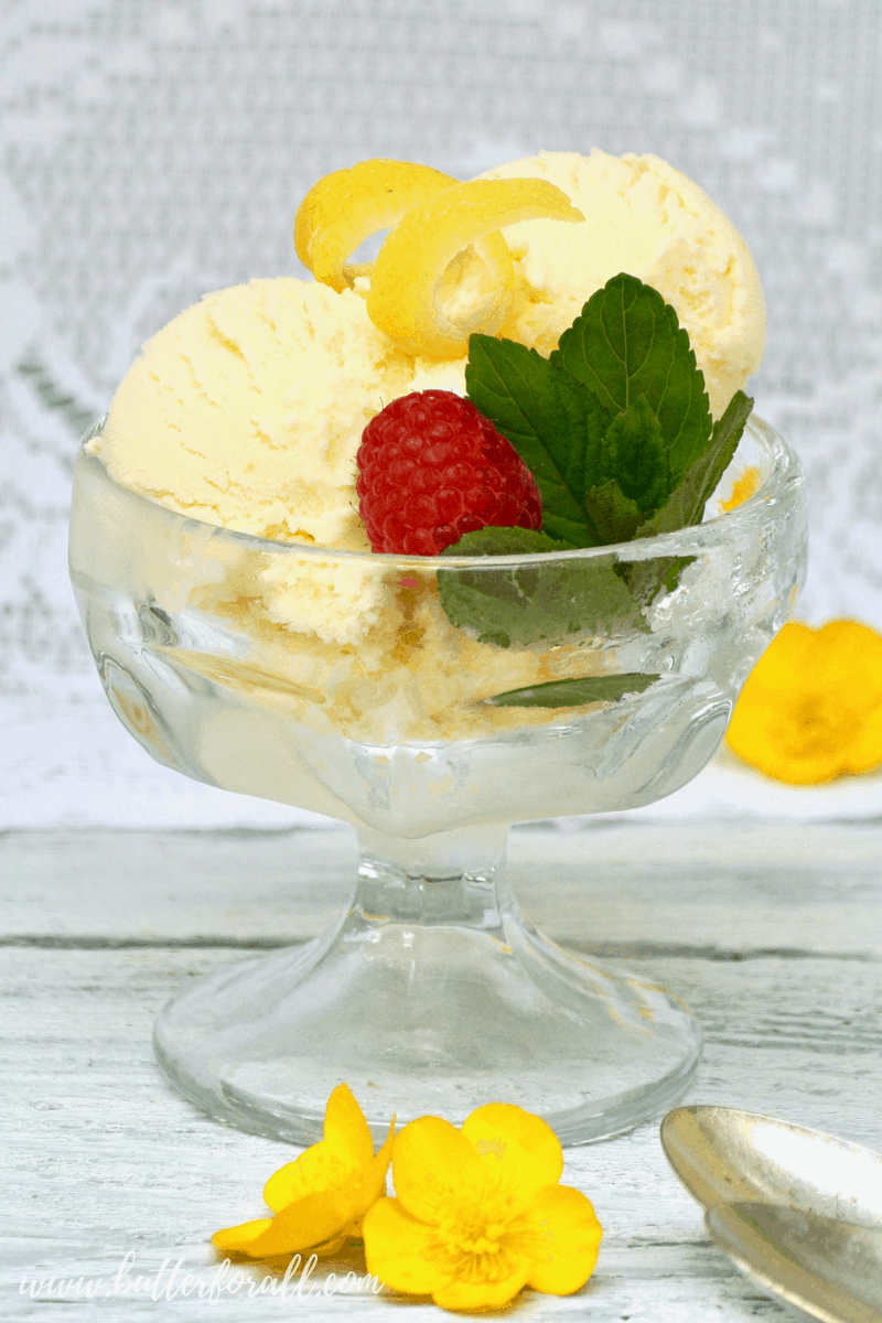 This sweet and tart Lemon Ice Cream is made with only three real food ingredients! Cultured Raw Dairy, Honey, and Real Lemon! Cultured Raw lemon Ice Cream is the perfect way to cool down while boosting probiotics and staying healthy! #realfood #rawmilk #rawcream #rawhoney #organic #lemon #sweetandtart #cultureddairy #healyourgut #probiotics #summer #icecream #easy #simple #cultured #dessert #honey #refinedsugarfree #wapf #nourishingtraditions #wisetraditions