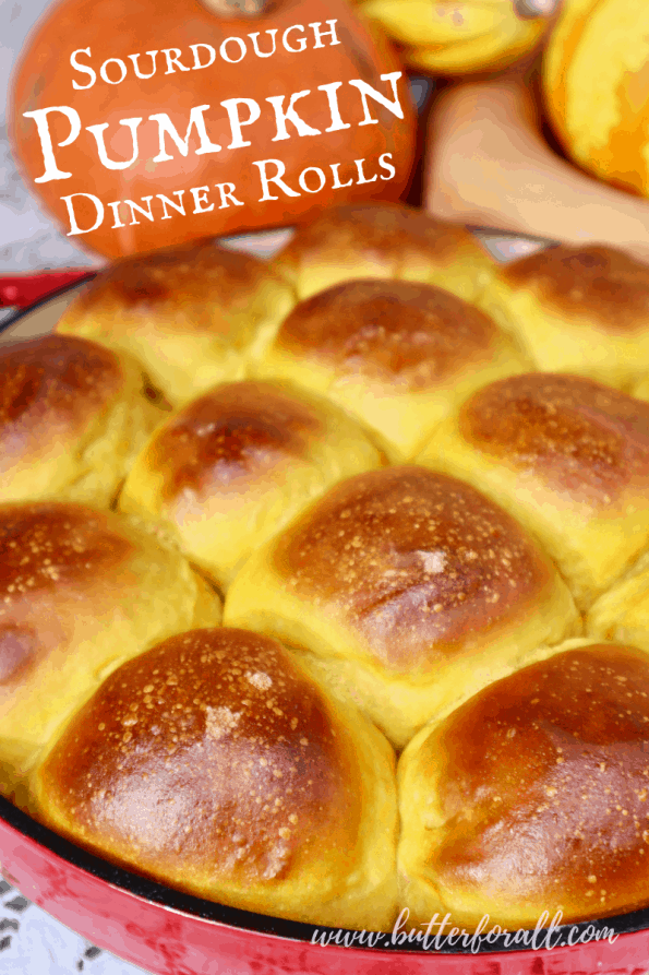 Pinterest Image showing a pan of golden-brown pumpkin rolls, with title text.