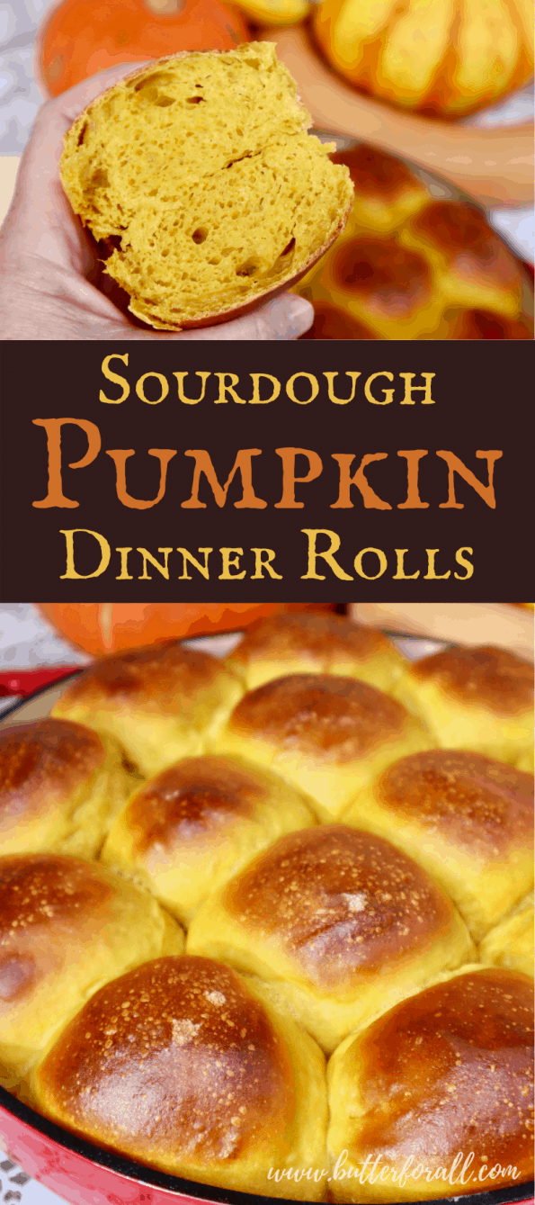 Pinterest Image showing a pan of golden brown pumpkin rolls, with title text.
