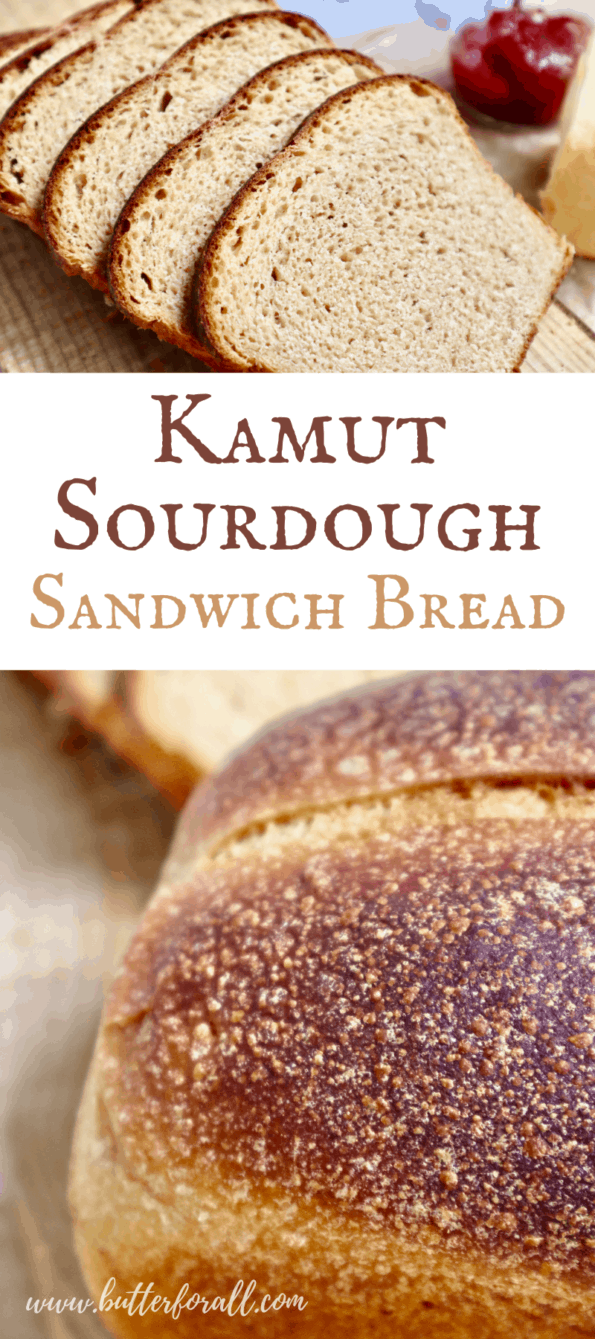Kamut sourdough sandwich bread slices and loaves with text overlay.