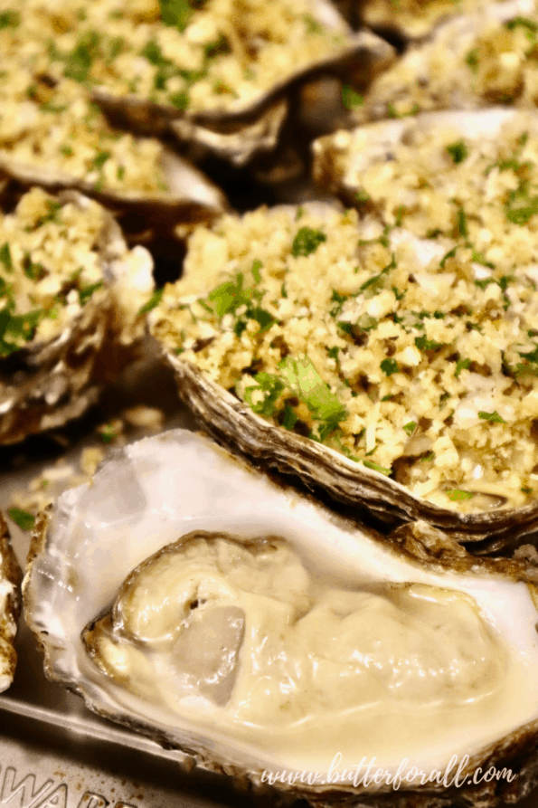 Fresh raw oysters aligned on a baking sheet with sourdough breadcrumb topping.