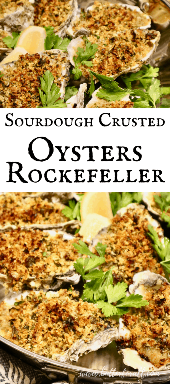 Fresh baked oysters topped with golden-brown sourdough breadcrumbs.