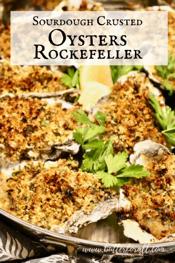 Freshly baked oysters with golden-brown sourdough breadcrumb topping.